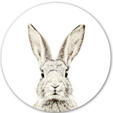 magneetsticker konijn