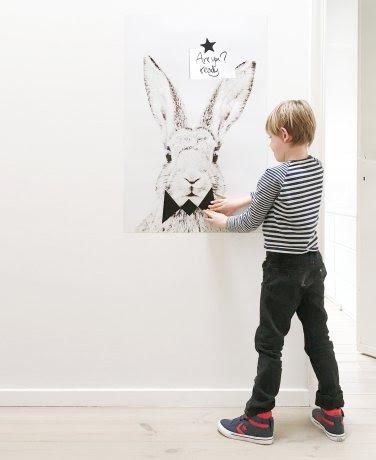magneetposter konijn zonder frame voorbeeld