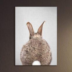 magnetische poster konijn