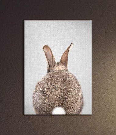 bunnybutt kleur