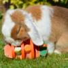 3D wortel konijn